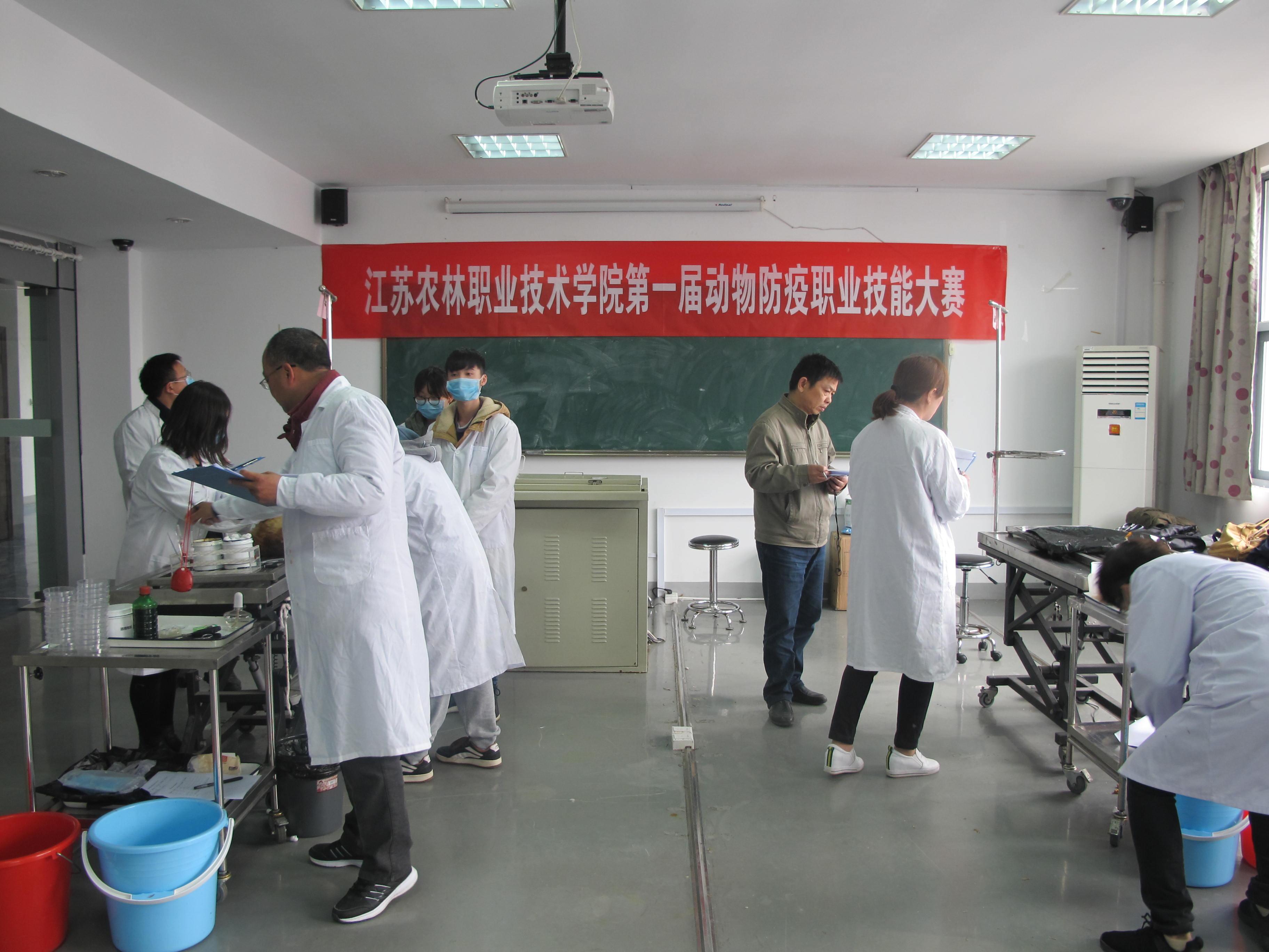 畜牧兽医系举办第一届动物防疫职业技能比赛